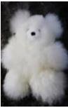 Pocket Teddy Bears