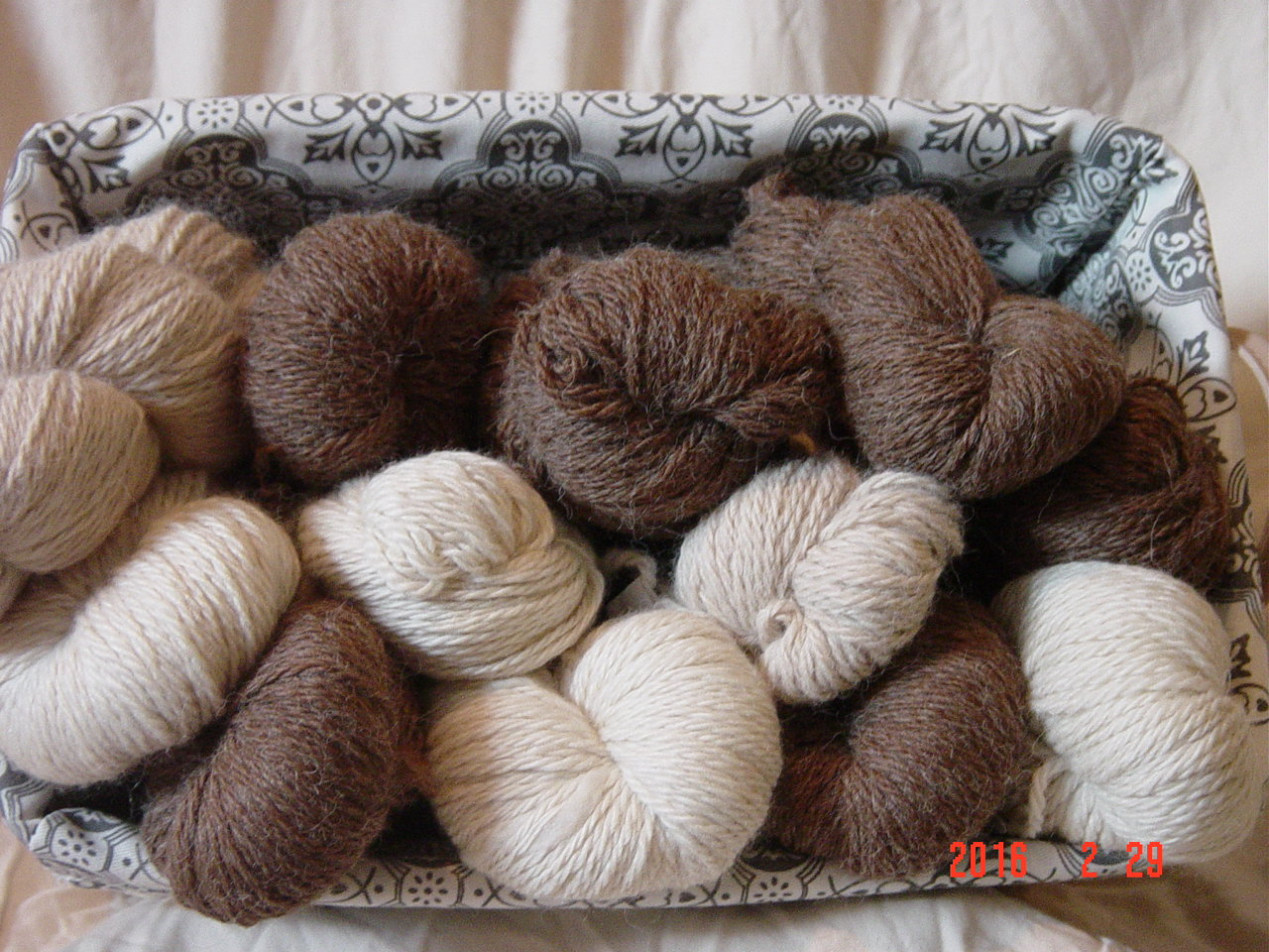 Worsted 200 yd Yarn